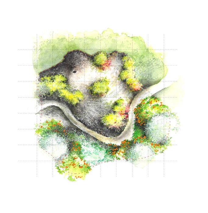 Giardino della signora - Garden festival