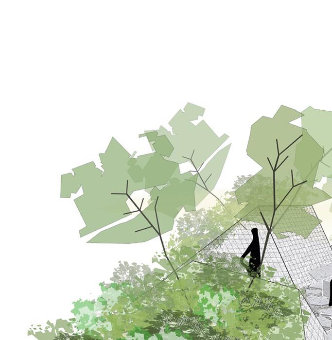 concept planta sapiens