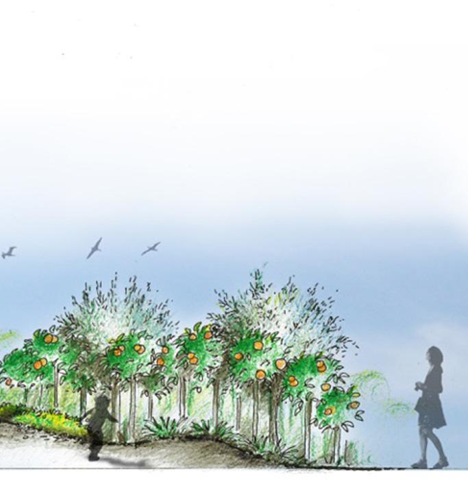 Concept giardino della signora