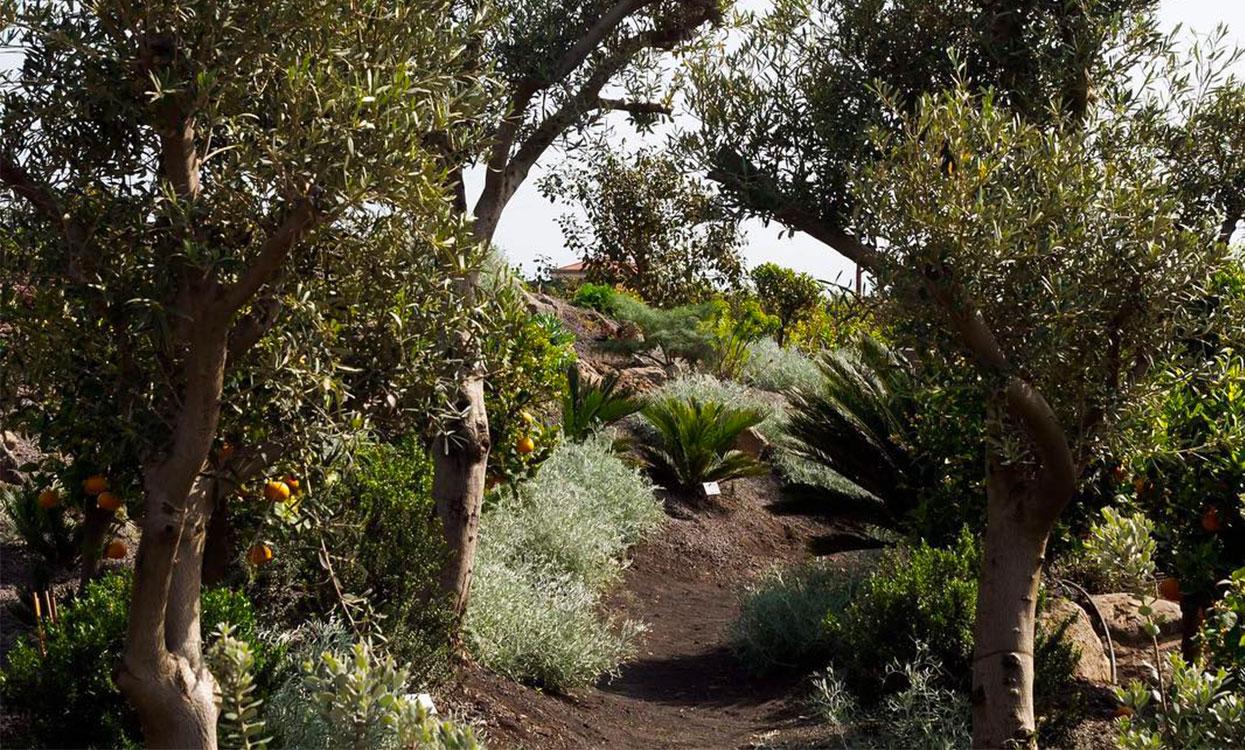slide_giardino_signora3