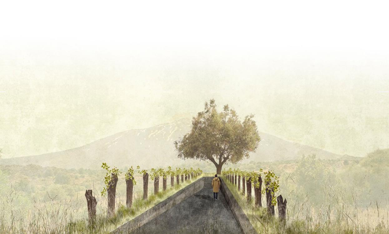 slide_lungo_sentiero