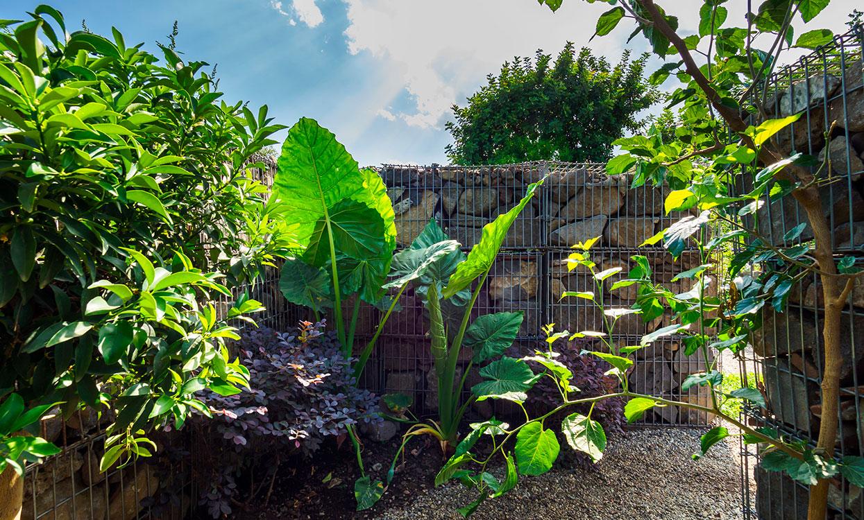 slide_puo_giardino_produrre_acqua-new1