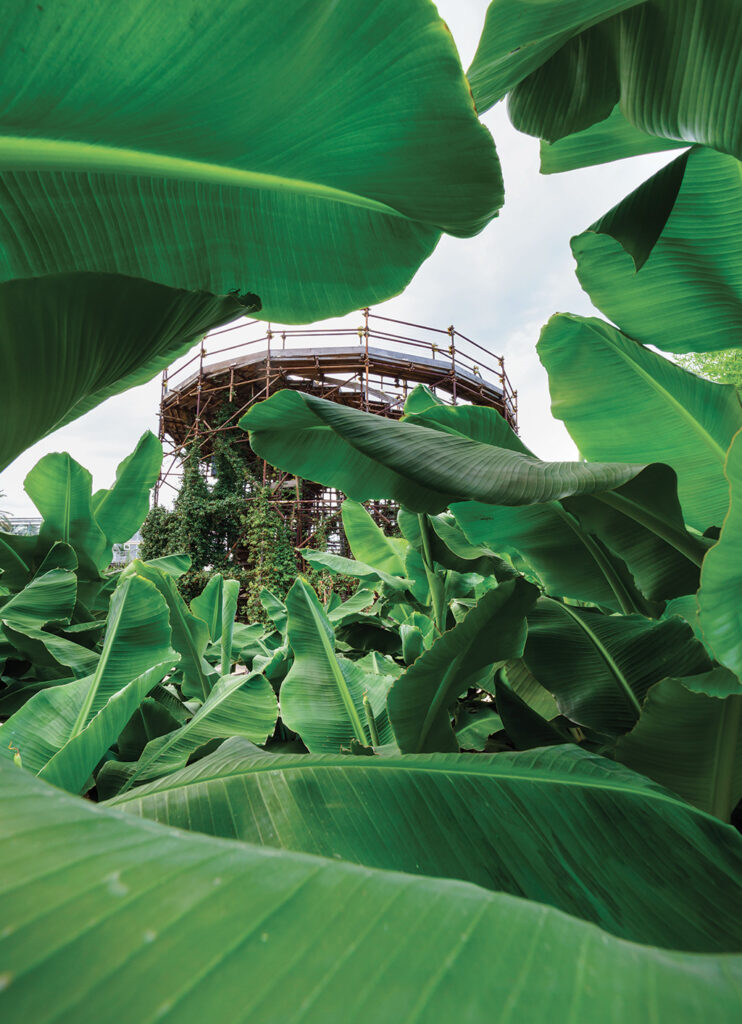 Radicepura Garden Festival | Il Manifesto